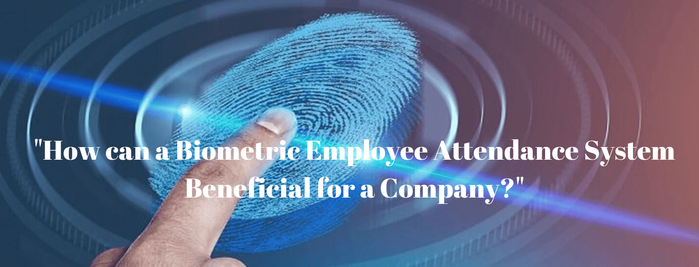 How can a biometric employee attendance system beneficial for a company?