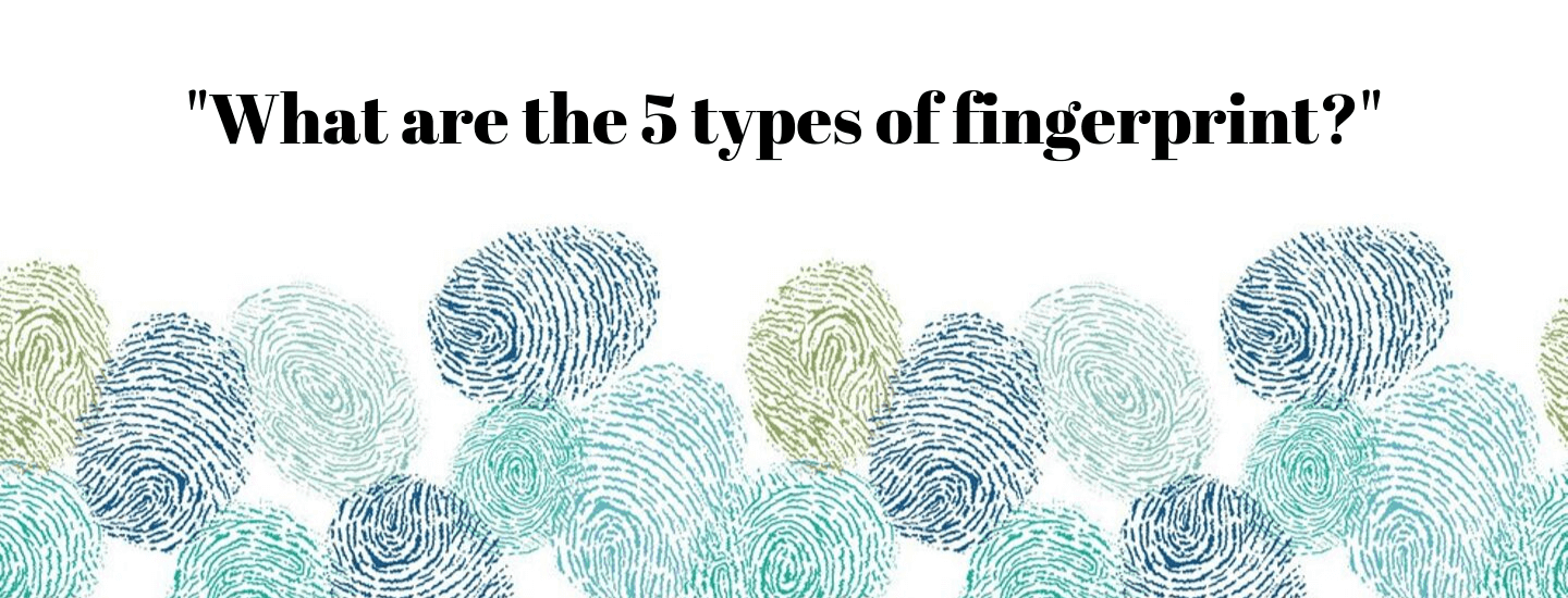 What are the 5 types of the fingerprint?