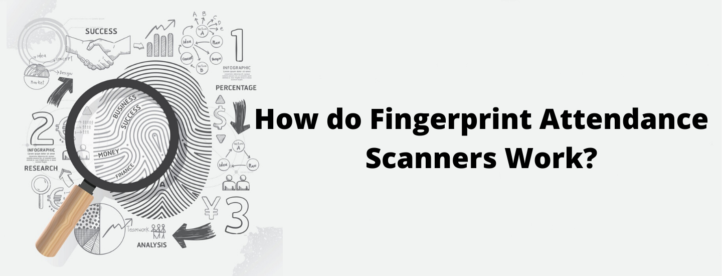 How do Fingerprint Attendance Scanners Work?
