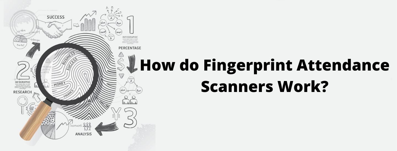How doFingerprint Attendance ScannersWork?